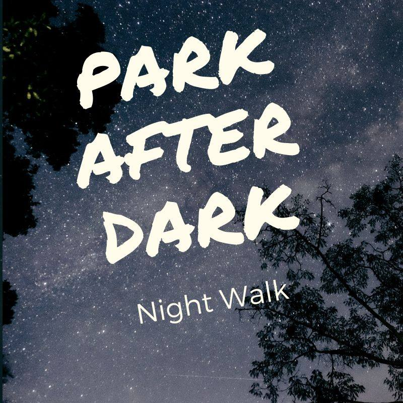 DSP park after dark