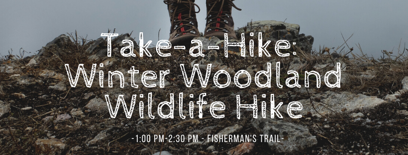 Take a Hike: Winter Woodland Wildlife Hike Fisherman's Trail