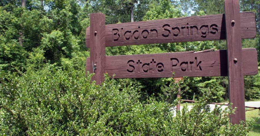 Bladon Springs Sign