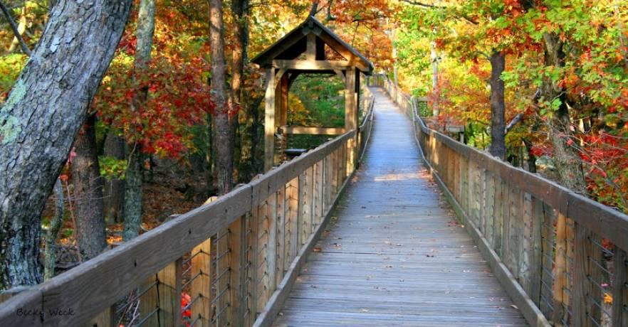 cheaha boardwalk