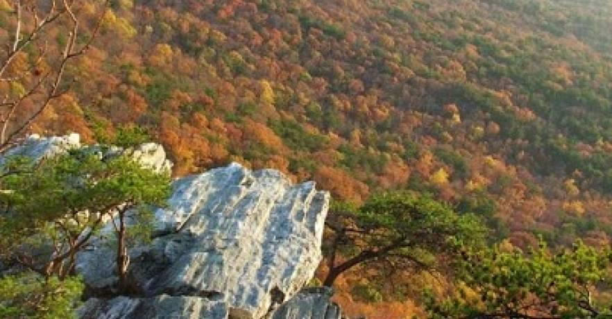 Cheaha Repelling Pulpit Rock