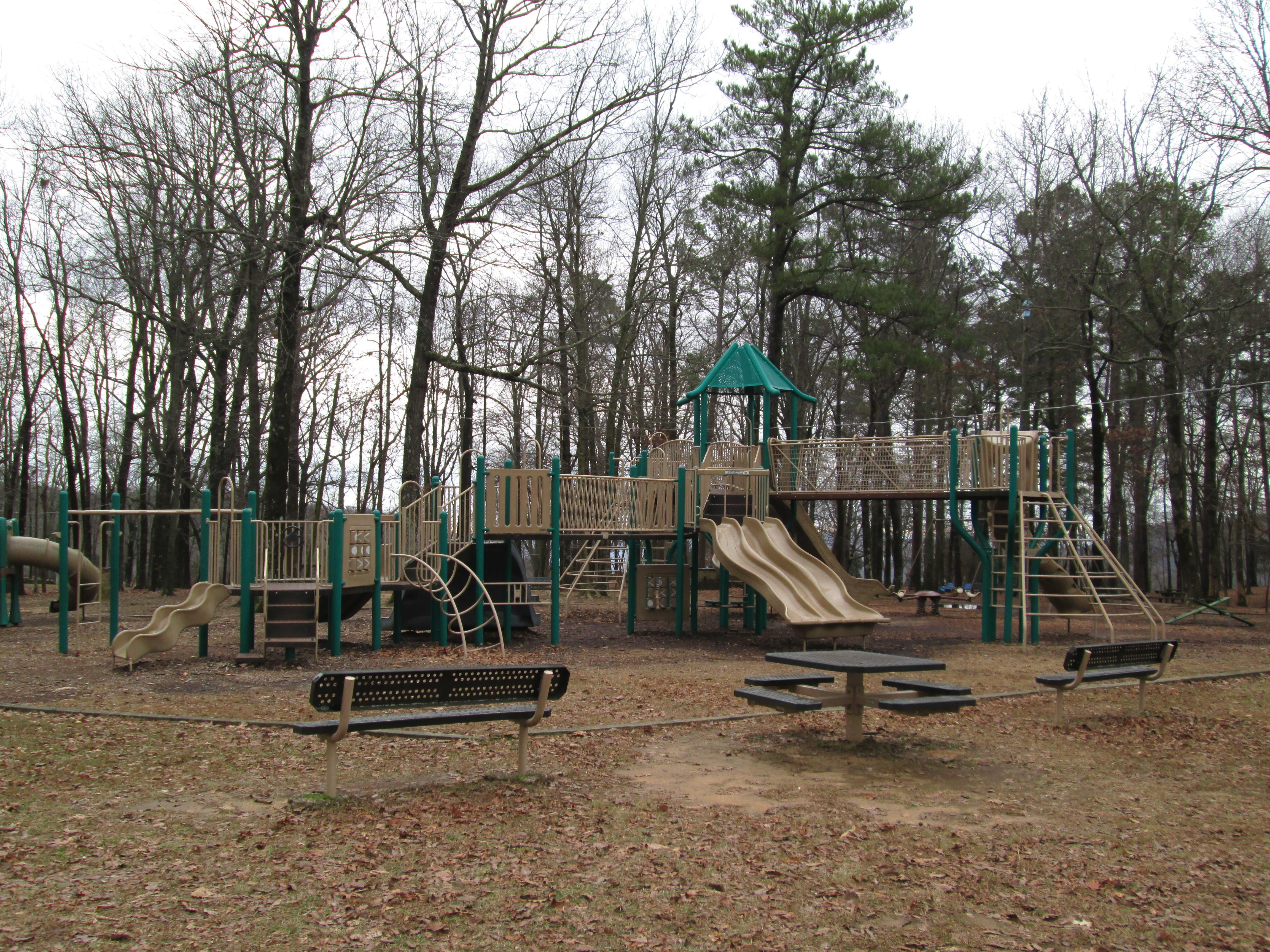 Picnic Area Playground 1