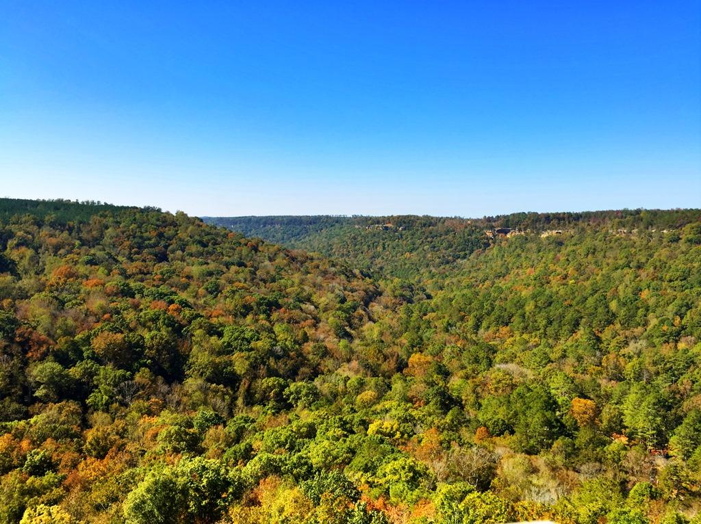 Bucks Pocket State Park Scenic Overlook