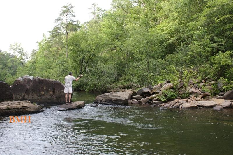 DSP Fly Fishing in Little River