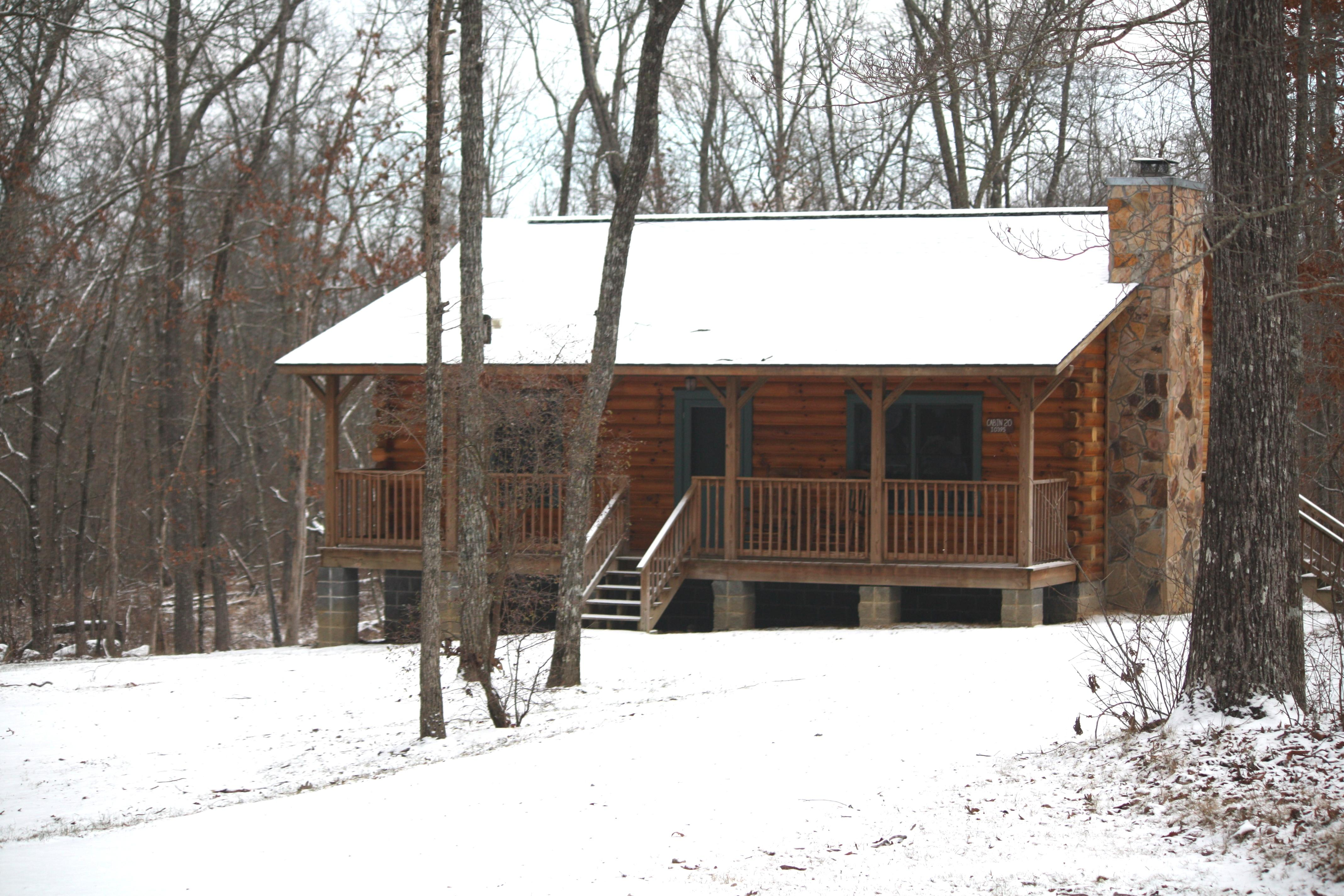 DSP Log cabin in snow