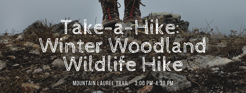 Take a Hike: Winter Woodland Wildlife Hike