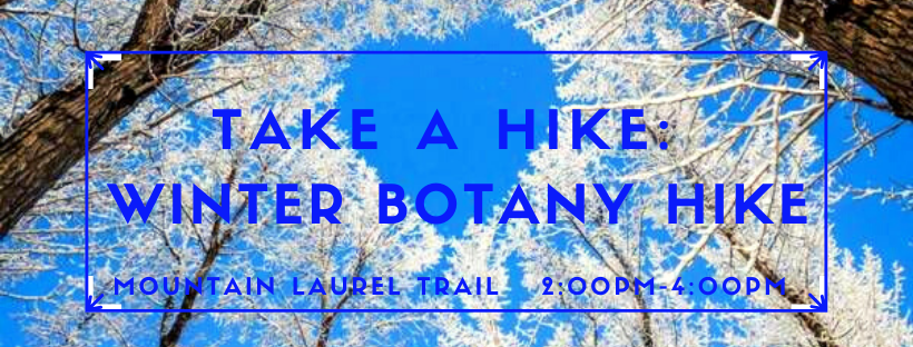 Take A Hike: Winter Botany Hike