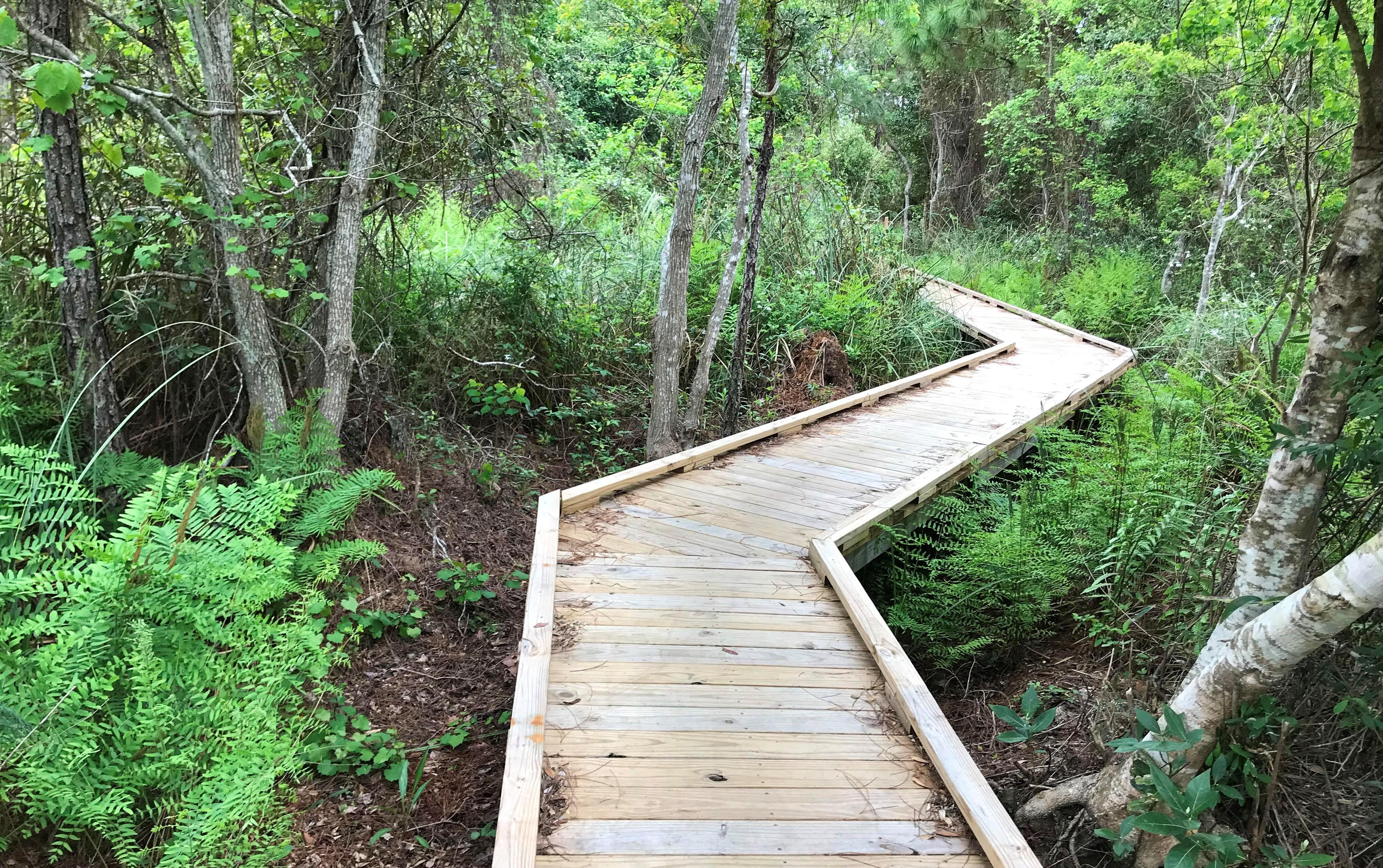 Middle Lake Overlook Boardwalk