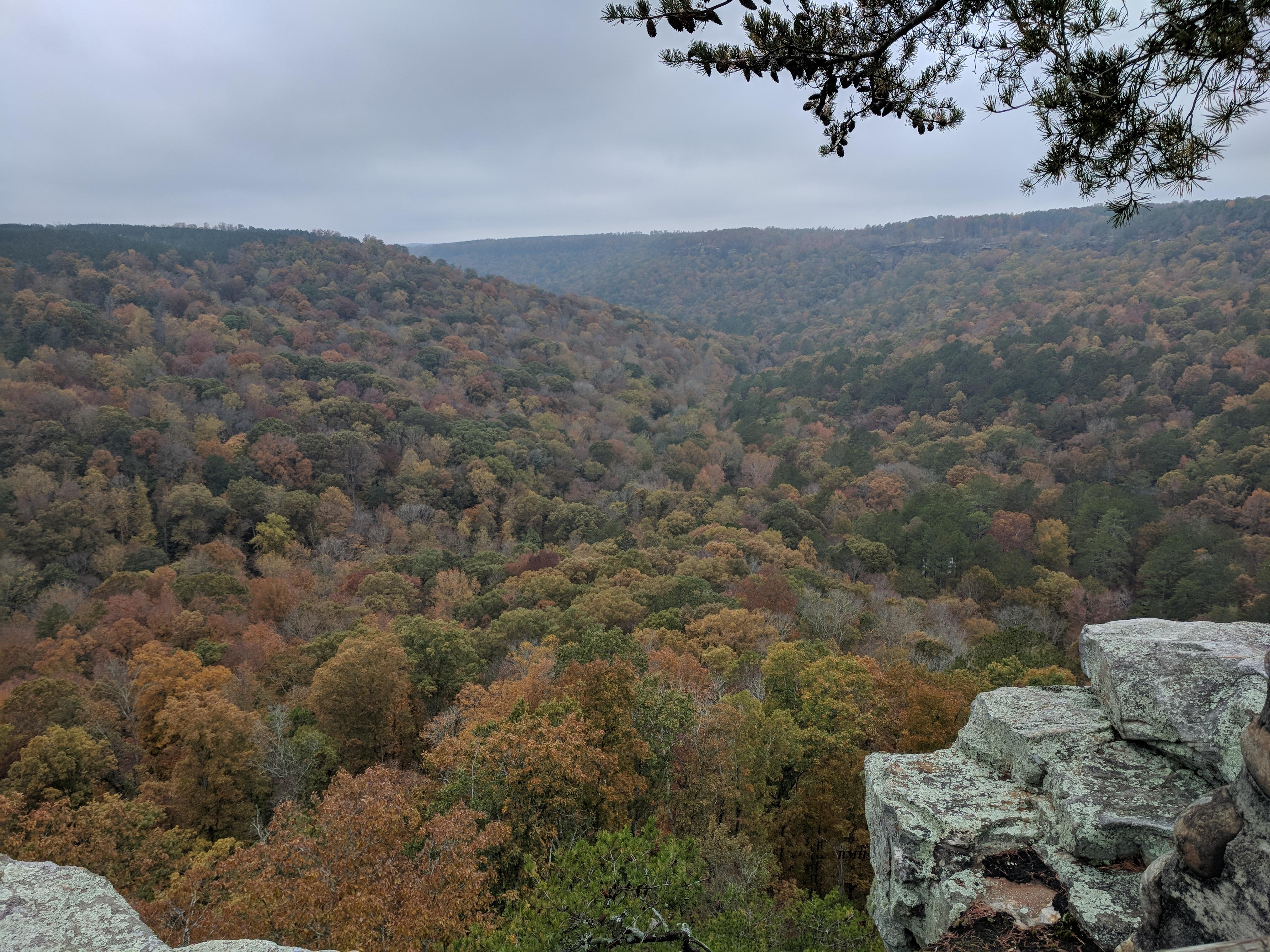 Buck's Pocket Overlook Trail