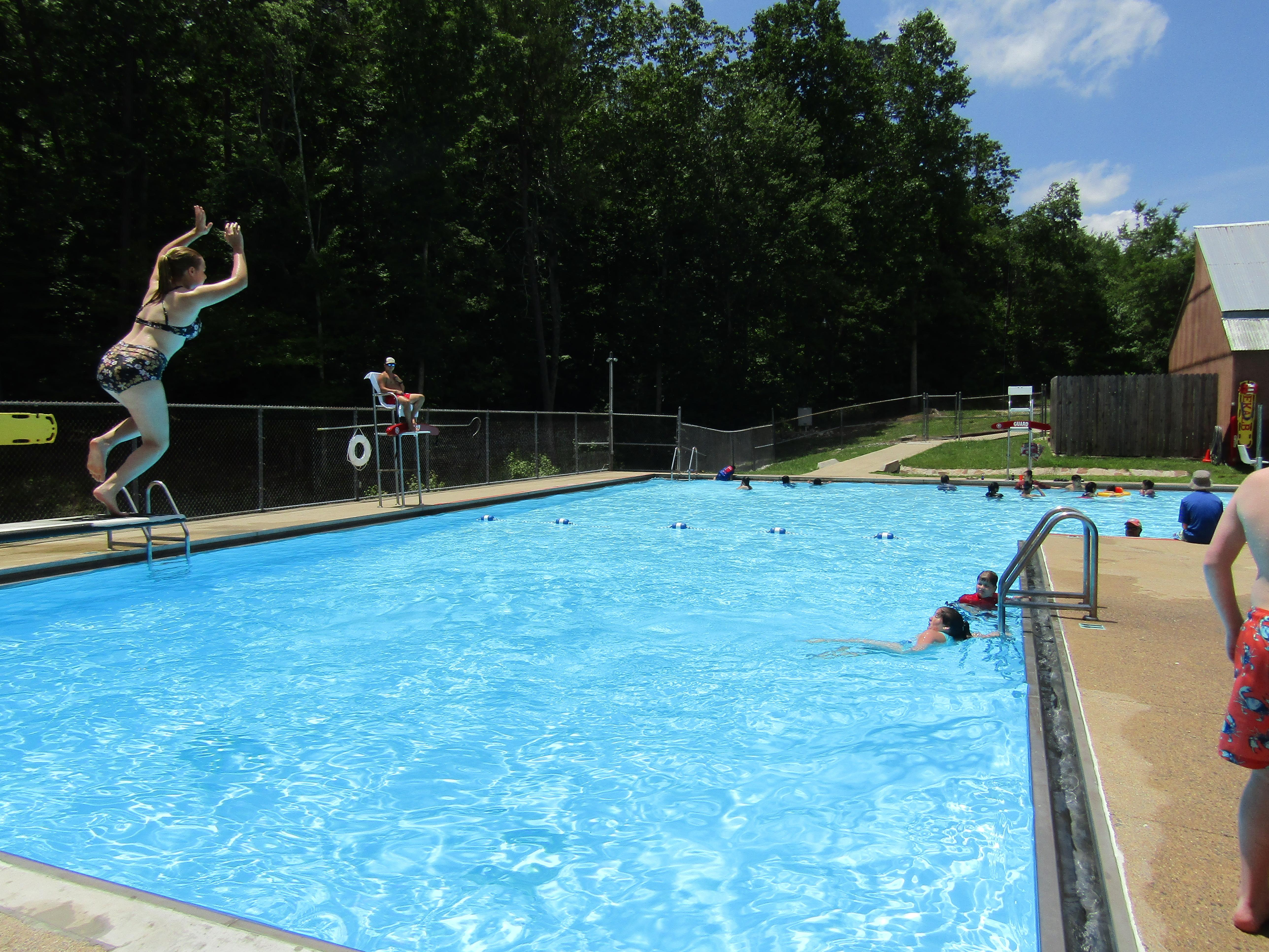 DSP Swimming Pool Diving Board