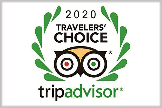 Trip Advisor 2020 Travelers' Choice Award