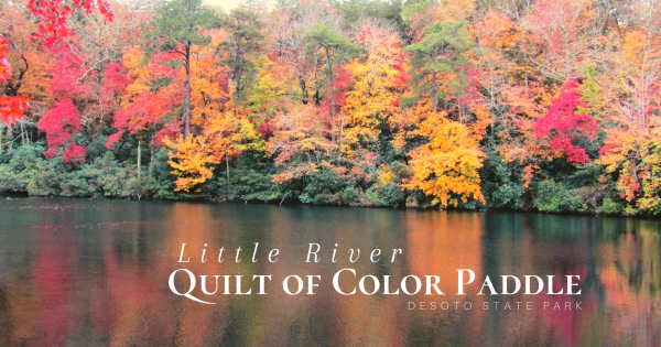 Little River Quilt of Color Paddle