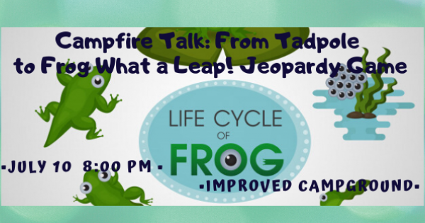 CSP Campfire Talk: From Tadpole to Frog What a Leap!